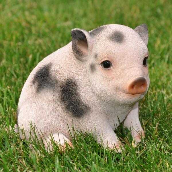 Schwein Gartenfigur | Ferkel | wetter- und frostbeständig |